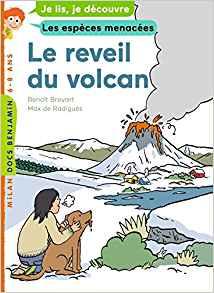 Réveil volcan